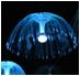 西藏水母燈